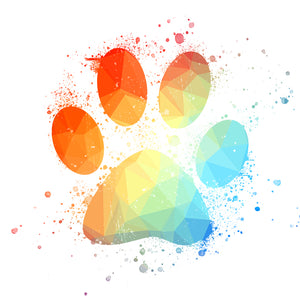 Geometric Rainbow Pawprint Paint Splash