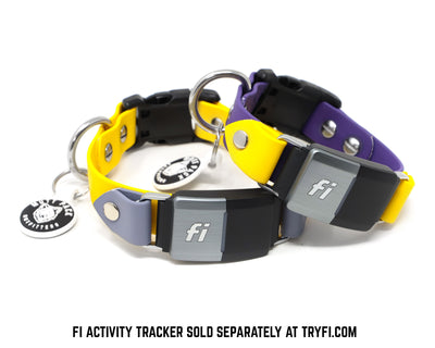 Fi Compatible BioThane Band with Quick Release Buckle by Mutt Pack