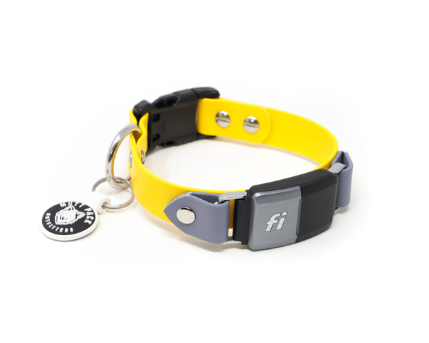 BioThane® Fi Dog Collar Band (Quick Release - Non-Adjustable)