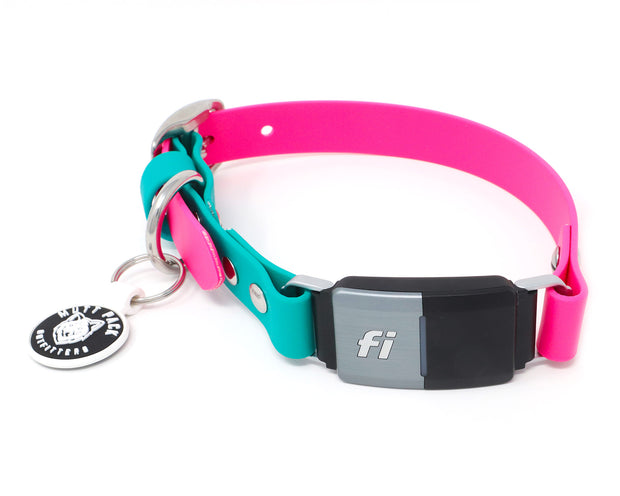 BioThane Fi Collar Band by Mutt Pack
