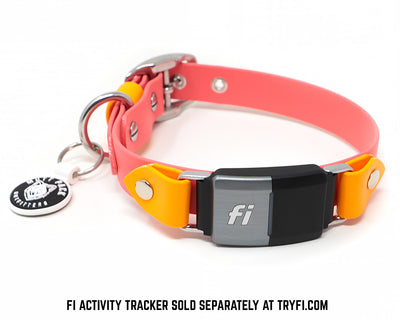 BioThane Fi Collar by Mutt Pack - Over the collar band