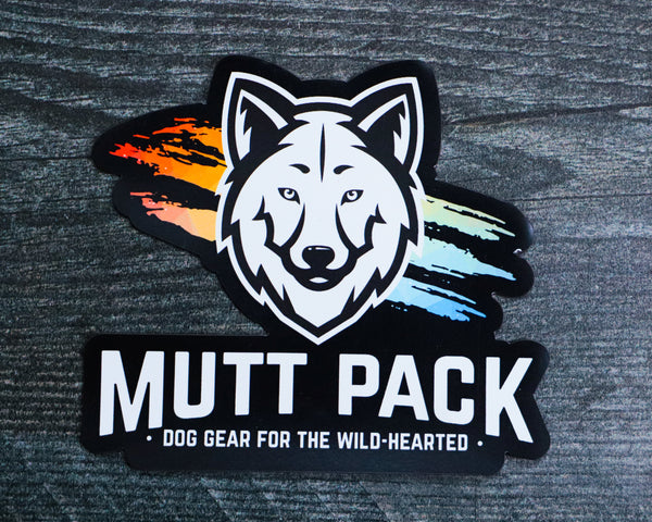 Mutt Pack Color Splash Car Magnet