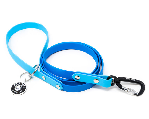 Multi-Tone BioThane Dog Leash By Mutt Pack
