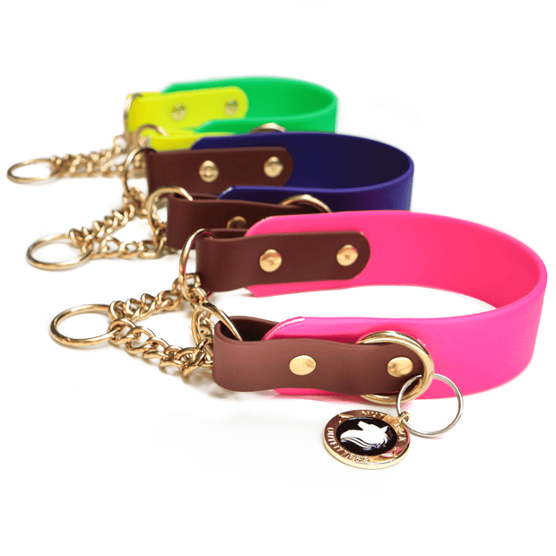 "Waterproof Biothane® Martingale Collar (1.5"") Biothane Collar - Mutt Pack Outfitters"