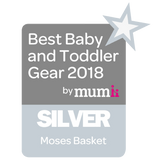 Best baby and toddler gear - silver