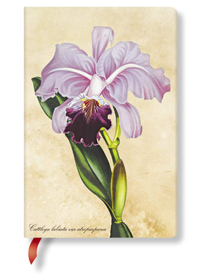 Hartey Marks- Notebook Painted Botanicals/Brazilian Orchid/Mini