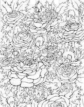 In the Garden: Coloring Book (Volume 2) Featuring Hand Drawn Illustrations