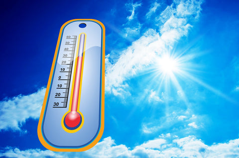 How to Keep Cool at The Barn This Summer