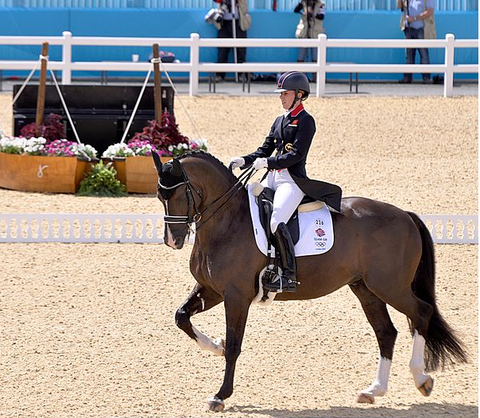 This Week's Equestrian 2020 Olympics Wrap Up