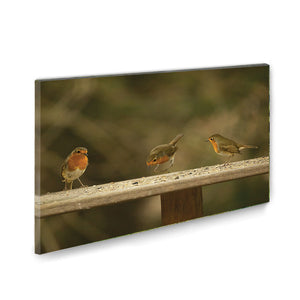 Bird Trio Wall Canvas