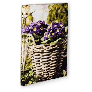 Primula Basket Wall Canvas