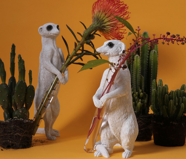 What should you take as meerkat ornaments for the garden? - Here It is