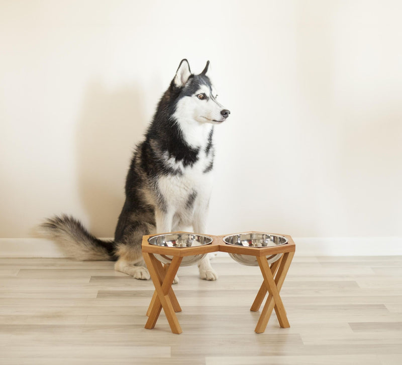 Elevated and Raised Wooden Dog Bowl Stand
