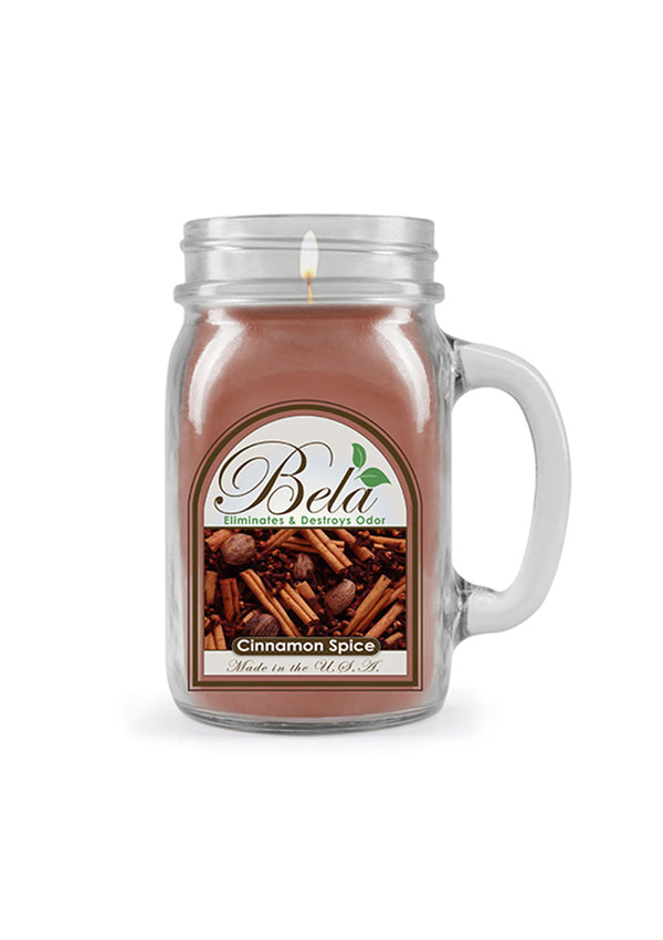 Bela Home Fragrance Cinnamon Spice Mug Candle 13 Oz