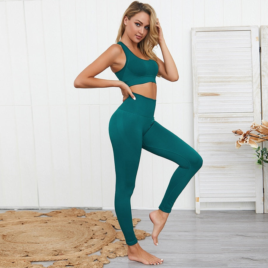 Fitness Sets Clothing for Women Yoga Suit Nylon Gym Set  2 Piece Costume Seamless Exercise Leggings Padded Sports Bras,ZF265