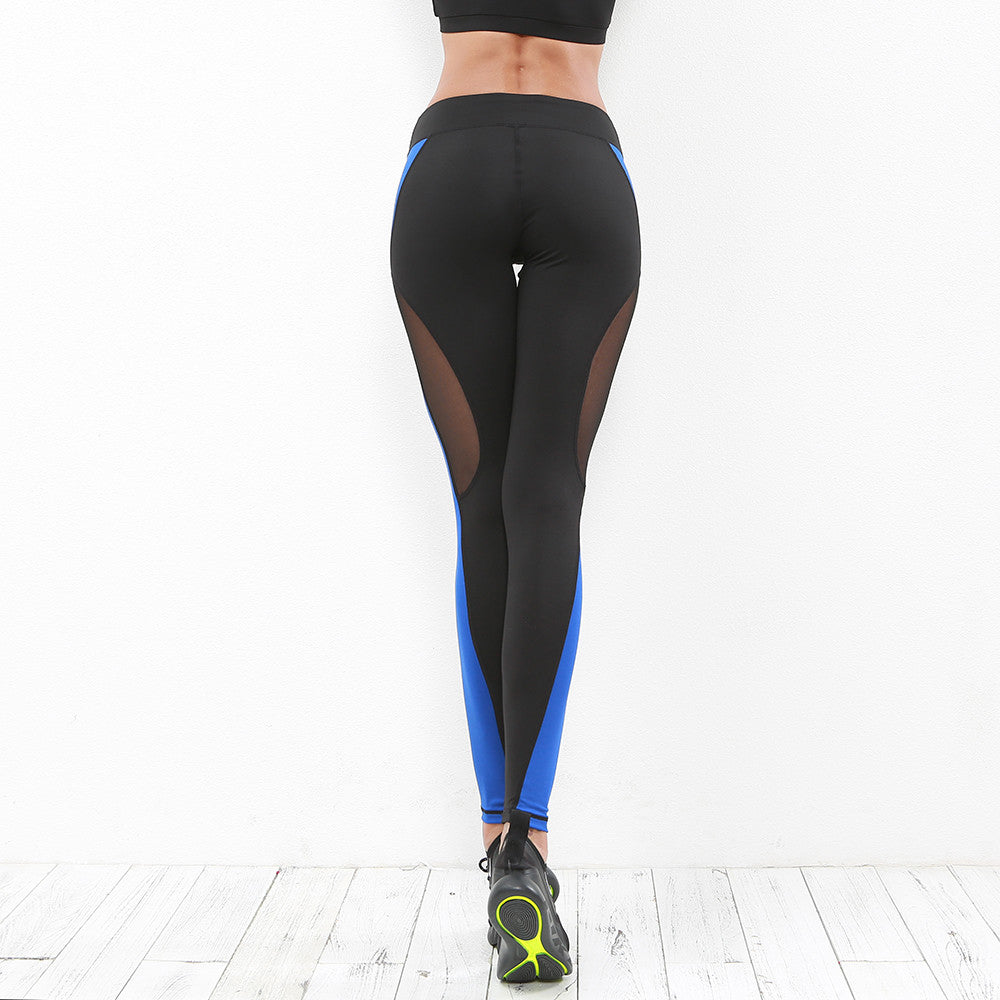 Emmy Blue Mesh Women's Workout Leggings - Activa Star
