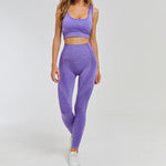 Alivia Active Sport Top + Leggings - 2 Piece Set