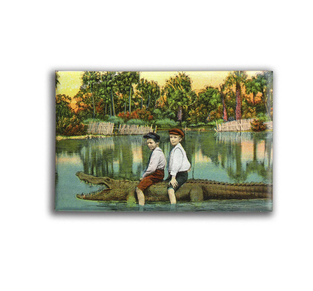 Boys Riding Alligator Vintage Florida Postcard