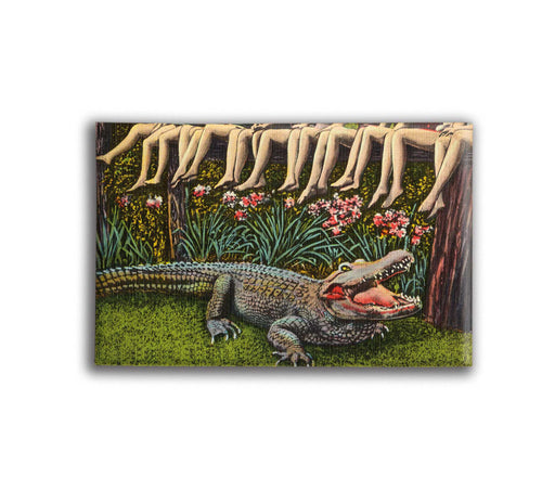 Alligator Legs Decorative Magnet - Vintage Postcard