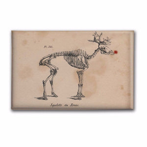 "Rudolph Skeleton 2""x3"" Decorative Magnet"