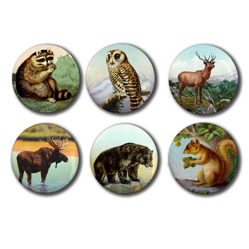 Mountain Aminals Set of Six 1-inch Magnets