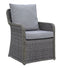 2 Piece Cushioned Patio Arm Chair In Aluminum Wicker Frame, Gray-Patio Furniture-Gray-Aluminum Frame & Fabric-JadeMoghul Inc.