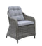 2 Piece Patio Arm Chair In Aluminum Wicker Frame and Cushioned Seating, Gray-Patio Furniture-Gray-Aluminum Frame & Fabric-JadeMoghul Inc.