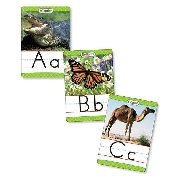 Bb Set Animals From A To Z Manuscript Alphabet Set-General-JadeMoghul Inc.