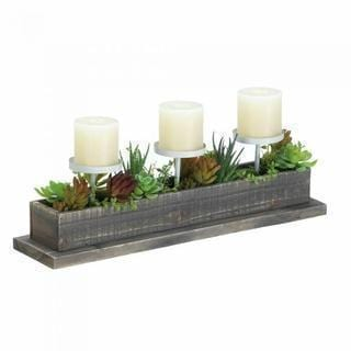 Health & Beauty Gifts RECLAIMED WOOD SUCCULENT CANDLE DISPLAY Default Title JadeMoghul