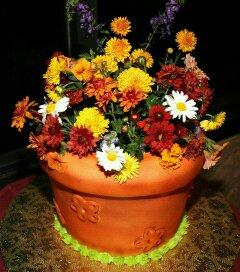 Flower Pot Cake - CS0221