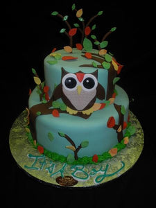 Owl Theme Cakes - BS235