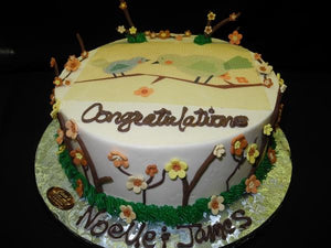 Baby Shower Bird Theme Cake - BS093