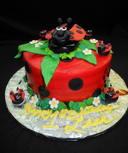 Lady Bug Birthday Cake - B0570