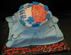 Brain Surgeon Fondant Custom Cake