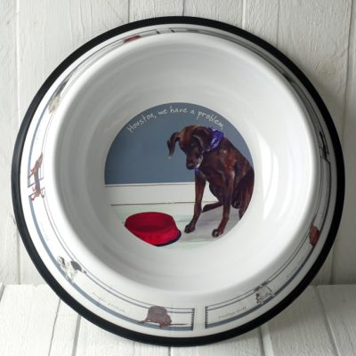 Houston, we have a problem- Large Dog Bowl