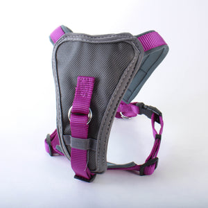 Doodlebone X-Over Dog Harness