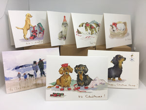 Christmas Card- It wasn't Me !