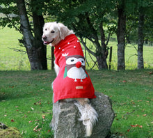 Festive Dog Jumpers- Canine and Co