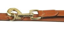 Strong Flat Adjustable Training Leather dog lead