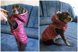 Fashion Dog Clothes  -5 colors