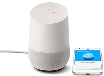 Residential Service - Google Home Wireless Speaker Setup
