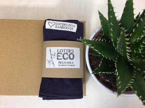 Reusable Bamboo Hankie