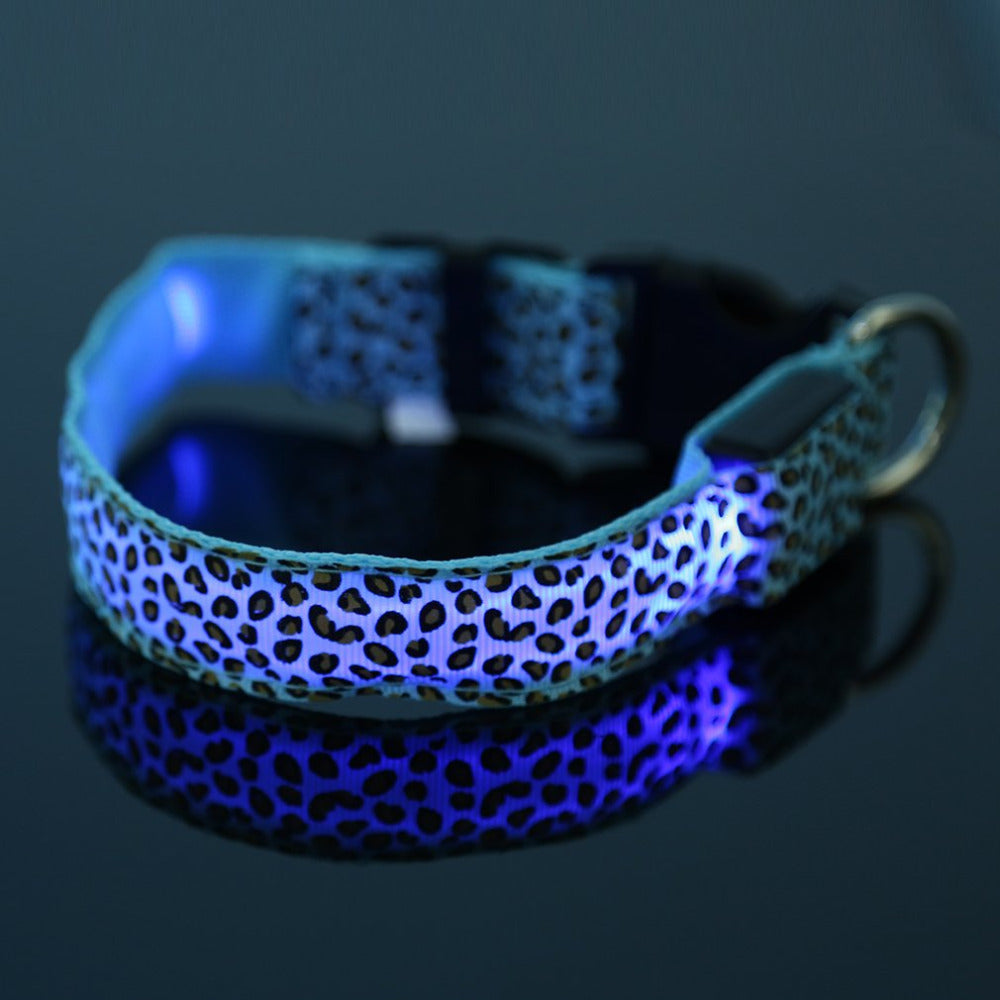 bright up auraglow light led super collar dog lighting