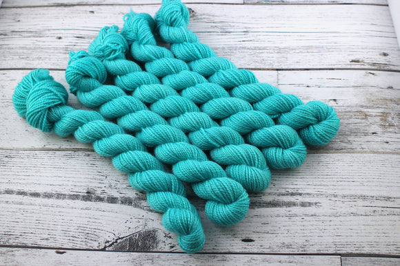 Beachcomber - Mini Skein