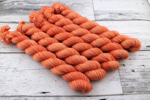 Peachy Keen - Mini Skein
