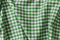 Carolina Gingham - Medium in Green