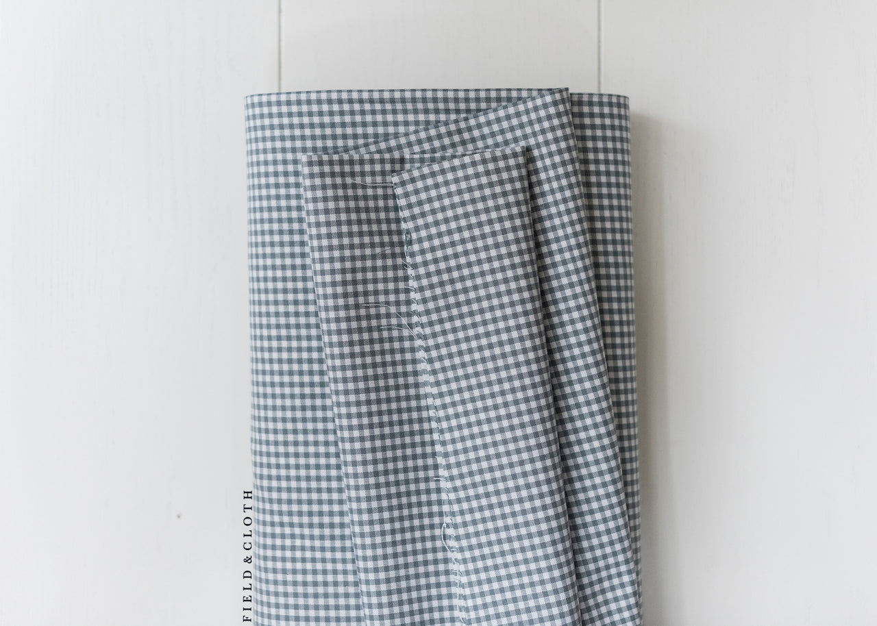 Carolina Gingham - Small in Silver