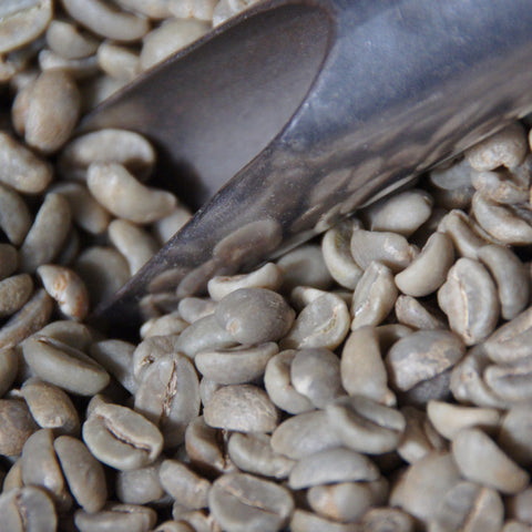Image of Colombian Arabica Coffee Beans