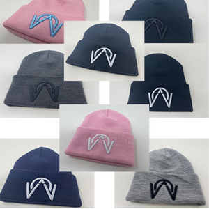 BEANIES with 3D Logo Assorted Colors OSFA