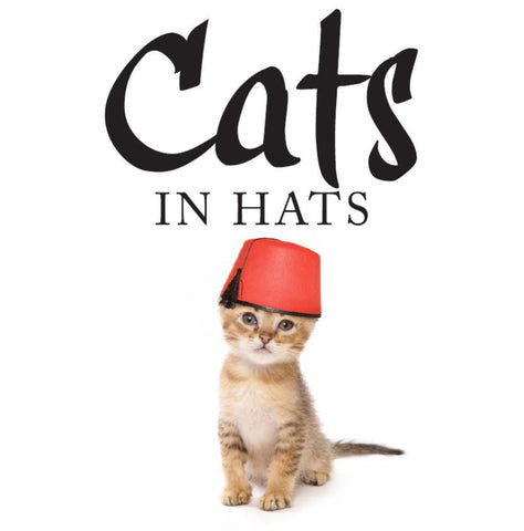 Cats in Hats -SPECIAL PRICE THIS MONTH